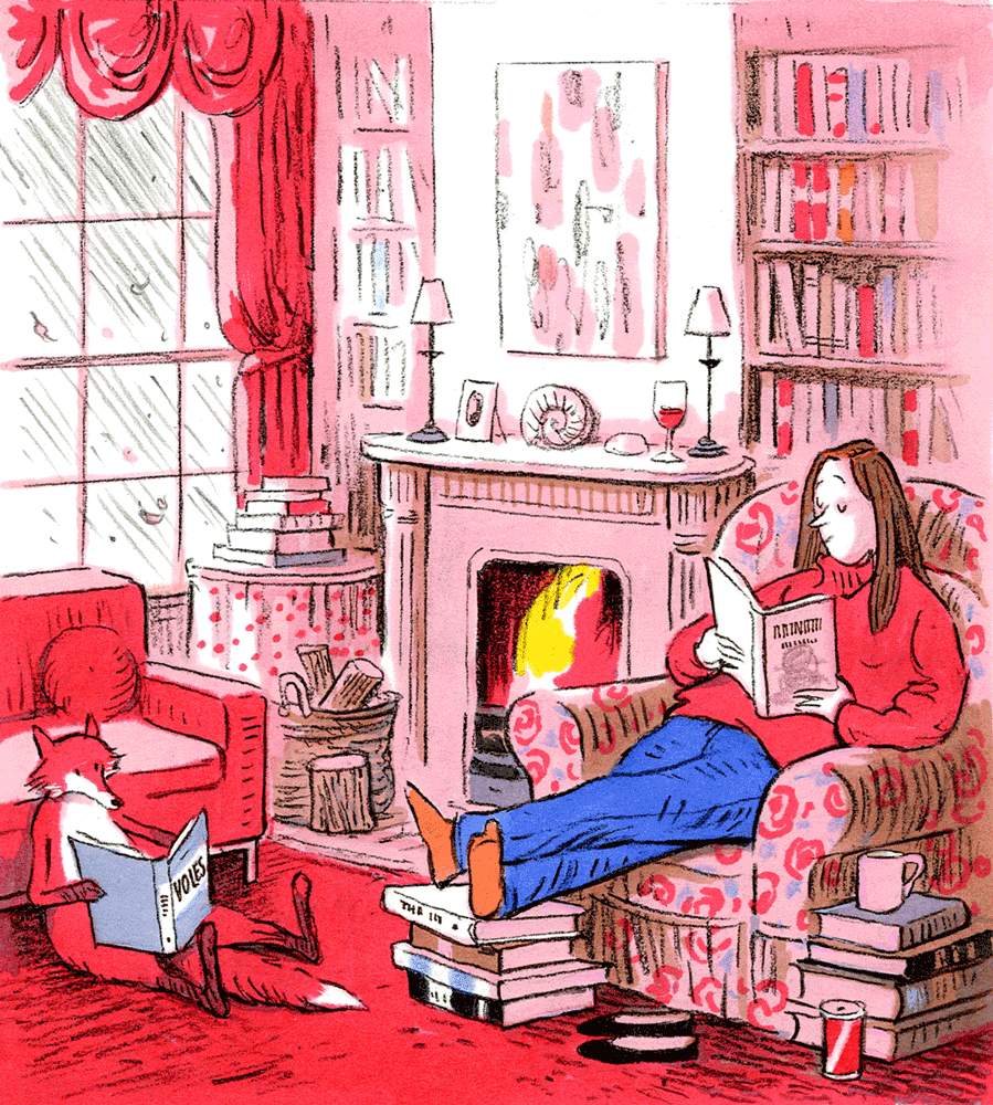 Cover Art: Slightly Foxed Issue 16, Posy Simmonds, 'Fireside Reading'