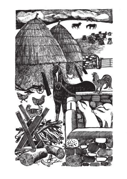 Rowena MacDonald, John Seymour - Slightly Foxed Issue 26