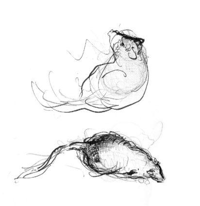 Martin Yeoman illustration - Richard Platt on Hans Zinsser