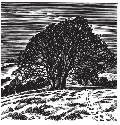 Cover Art: Slightly Foxed Issue 28, Howard Phipps, 'Downs in Winter'