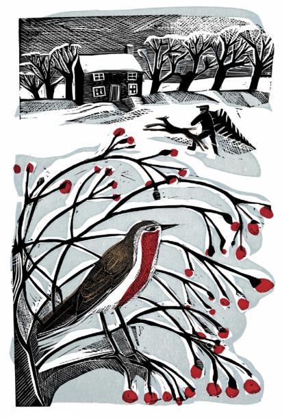 Cover Art: Slightly Foxed Issue 36, Angela Harding, 'Bringing Back the Tree'