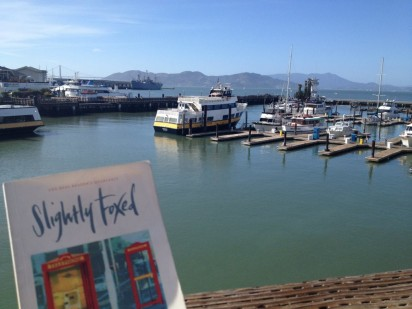Slightly Foxed in San Franciso Bay