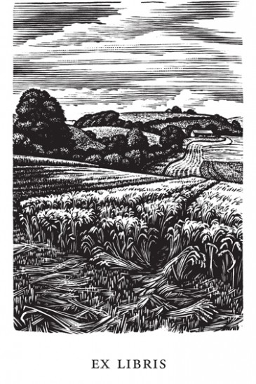 Howard Phipps Bookplates - Coombe Bissett Down - Wood Engraving