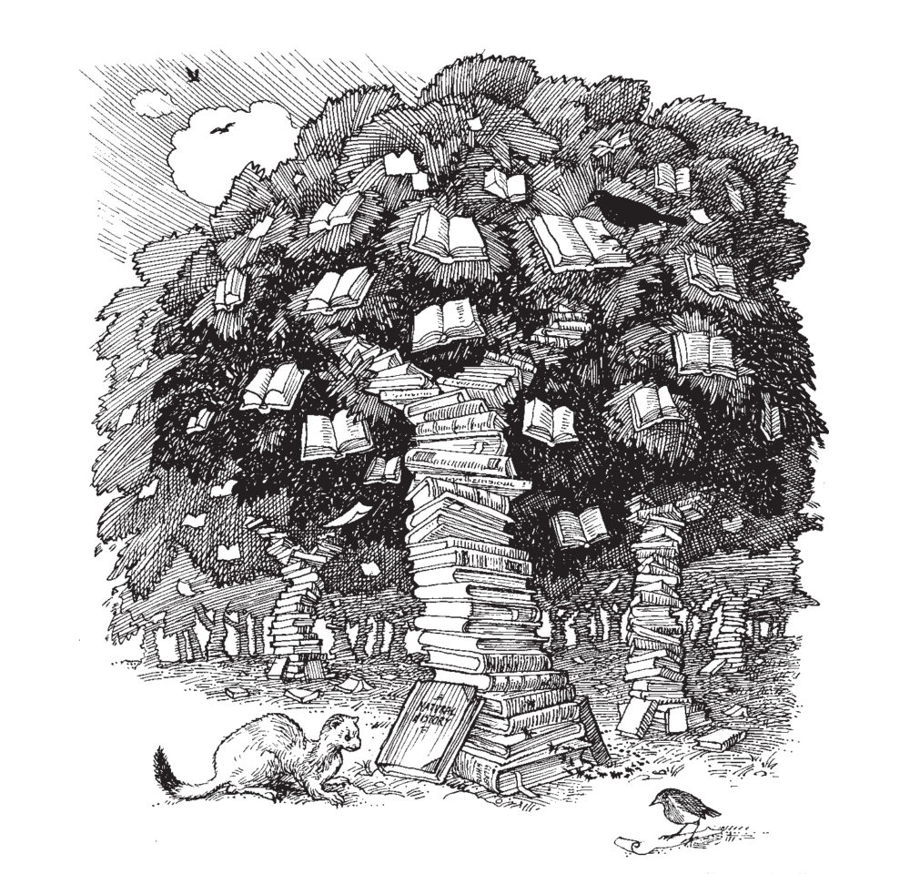 Richard Mabey on ecosystems of the library, Slightly Foxed Issue 47