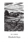 Coombe Bissett Down (1000 Bookplates)