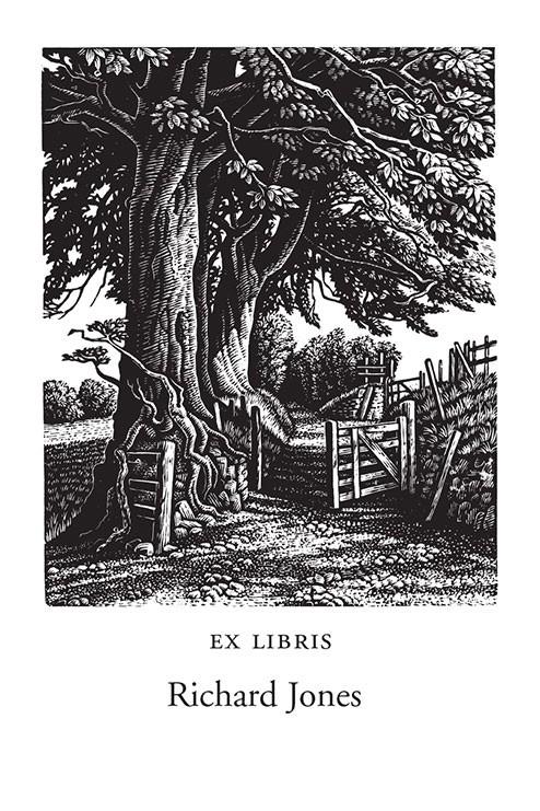 A Green Lane, Exmoor (1000 Bookplates)