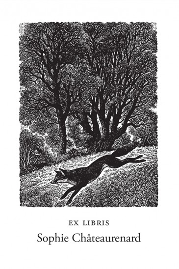 Sue Scullard Bookplates – Dashing Fox - Wood Engraving