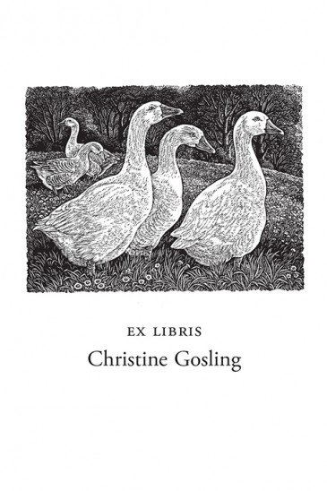 Sue Scullard Bookplates – Geese in a Meadow - Wood Engraving