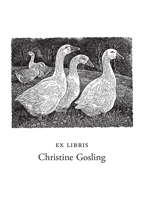 Geese in a Meadow (1000 Bookplates)