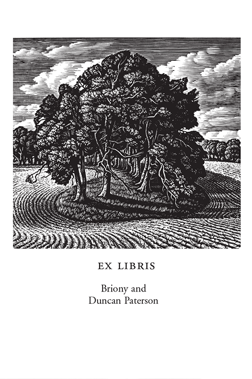 A beech-shaded hollow, Cranborne Chase (500 Bookplates)