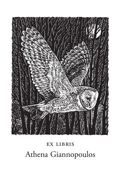 Barn Owl (500 Bookplates)