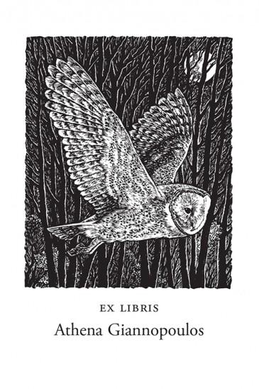 Sue Scullard Bookplates – Barn Owl - Wood Engraving