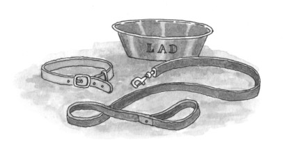 Anna Trench illustration - Sarah Lawson on Albert Payson Terhune, Lad: A Dog