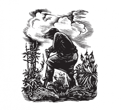We love wood engraving at Slightly Foxed and in the printed magazine itself we have an occasional series to introduce the work of some of our favourite engravers.