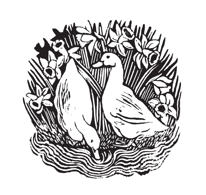 Rosalind Bliss, Ducks and Daffodils