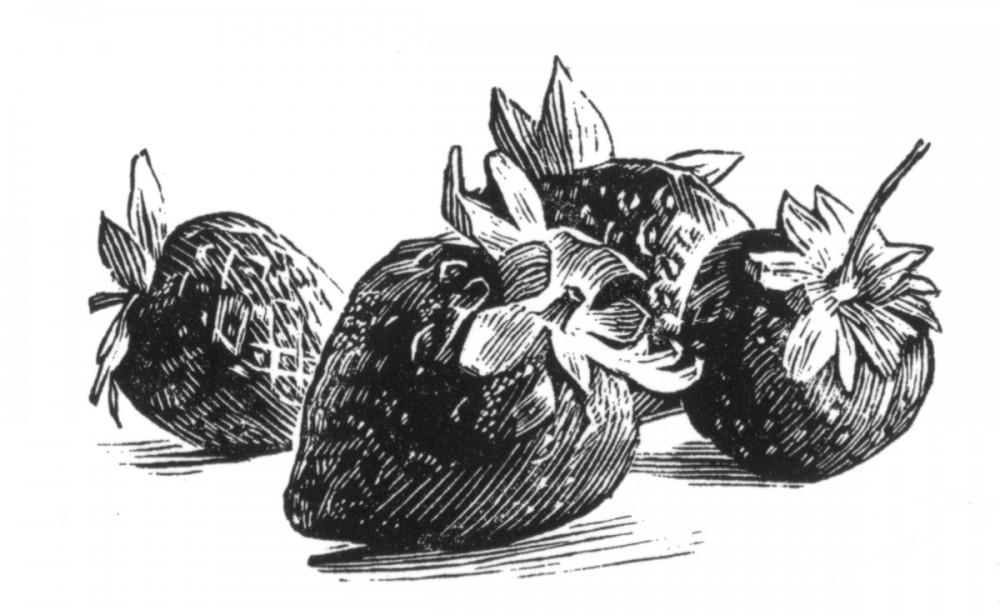 Strawberries, Simon Brett