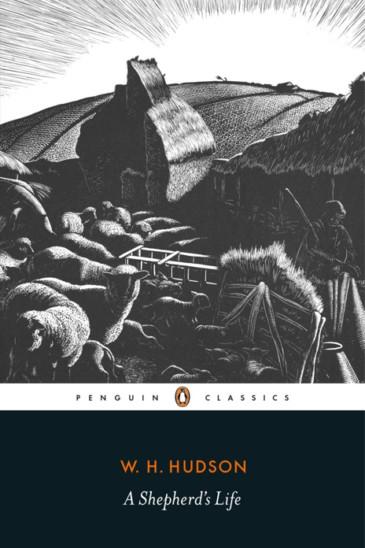 W. H. Hudson, A Shepherd's Life - Slightly Foxed shop