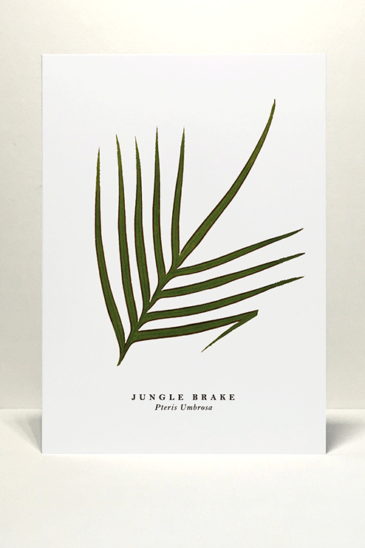Wildfolk Cards