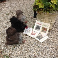 Slightly Foxed Autumn Bookshop of the Quarter: Much Ado Books. Chickens.