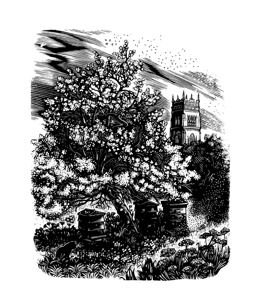 Miriam Macgregor, Somerset Garden - Nicholas Asprey, Life of the Bee