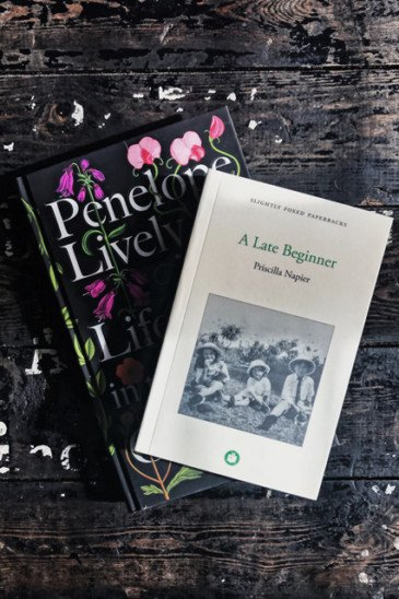 A Late Beginner & Life in the Garden