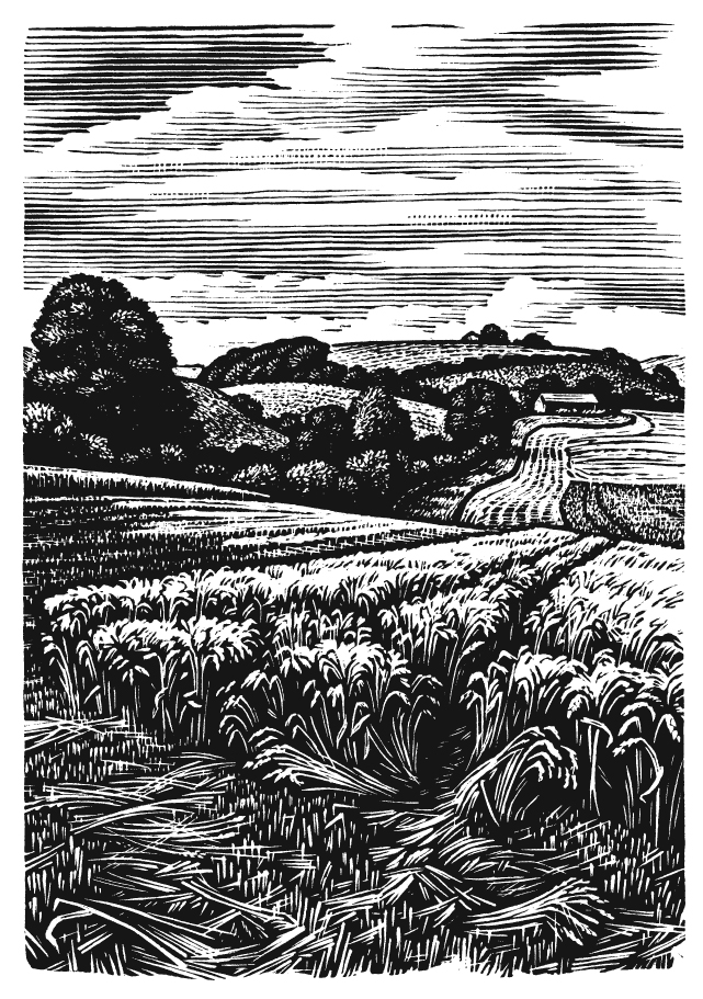 Bookplates - Coombe Bissett Down
