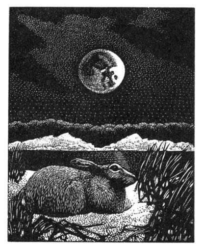 Kathleen Lindsley, Solstice Lunar eclipse Issue 43
