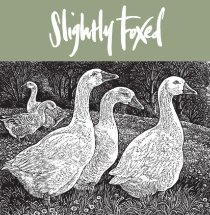 Slightly Foxed August Wayzgoose