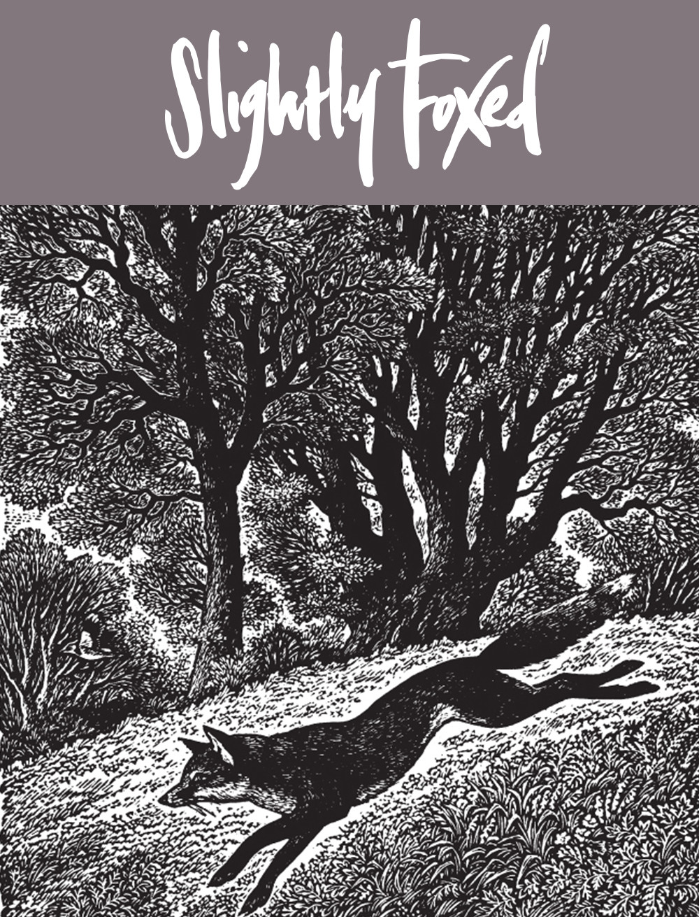 Slightly Foxed August News: The last days of summer