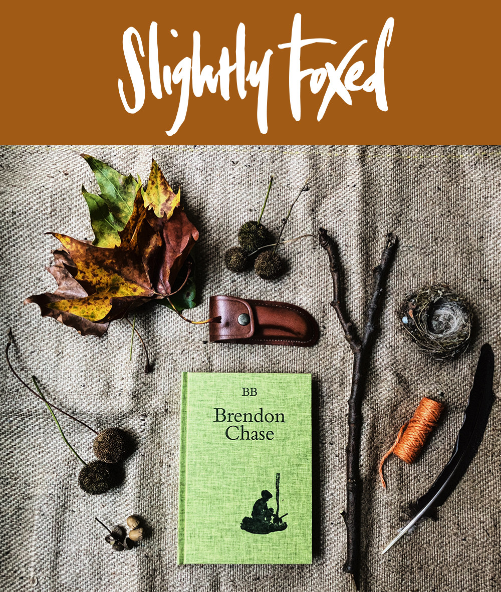 Slightly Foxed October News: Forest School - BB, Brendon Chase
