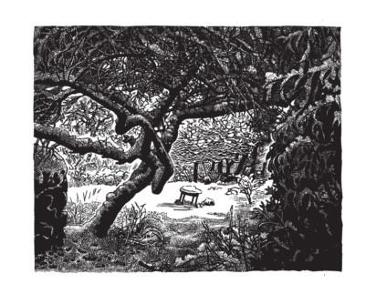 Miriam Macgregor - Winter Garden