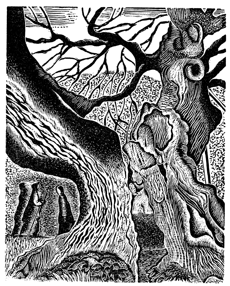 Angela Le Maire, The Capon Tree - Adam Foulds on Geoffrey Hill, SF Issue 55