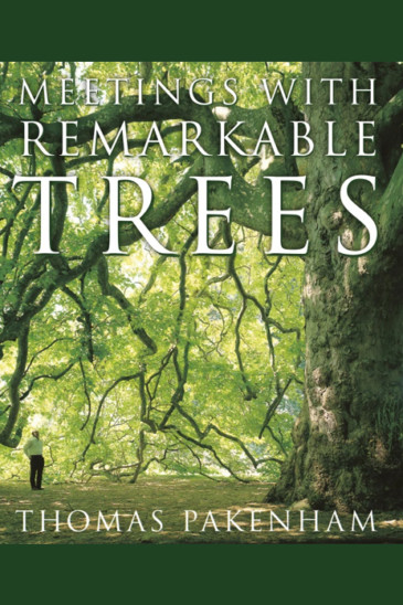 Thomas Packenham, Meetings with Remarkable Trees - Foxed Pod Episode 9