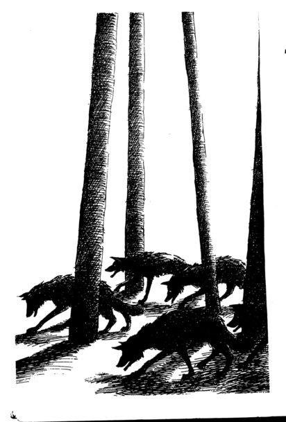 A. F. Harrold on Joan Aiken - Slightly Foxed Issue 64