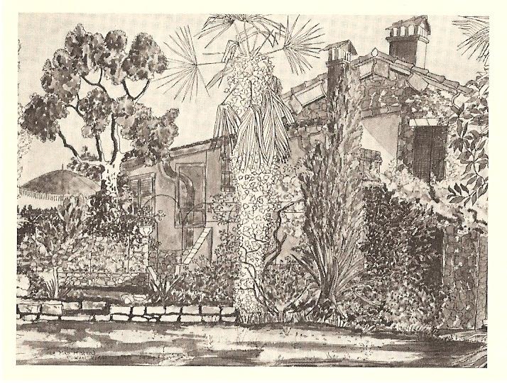 Hazel Wood on Suzanne St Albans, Mango and Mimosa