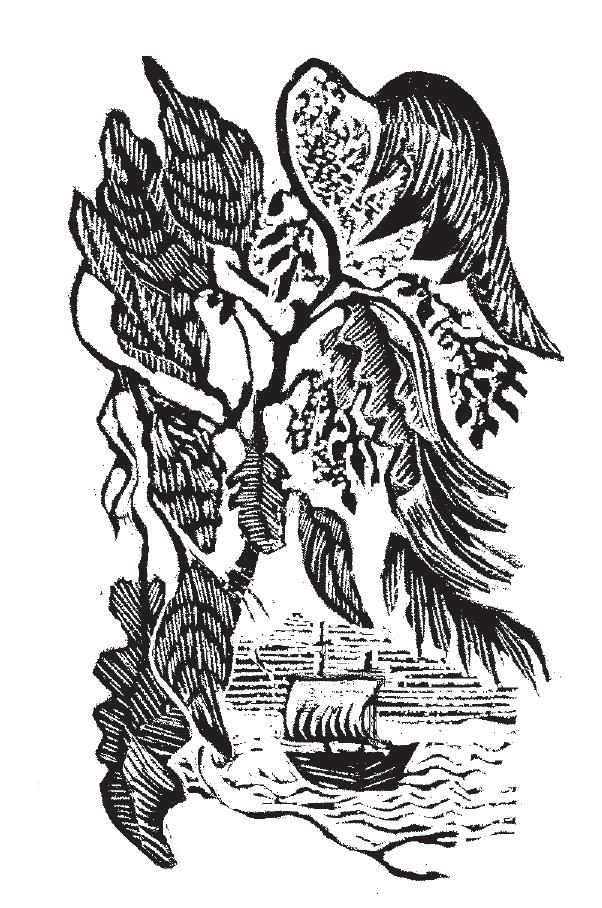 Mary Kuper artwork - Diana Preston on William Dampier, Slightly Foxd Issue 18