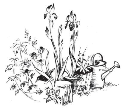 Ursula Buchan on V. Sackville-West, In Your Garden; In Your Garden Again
