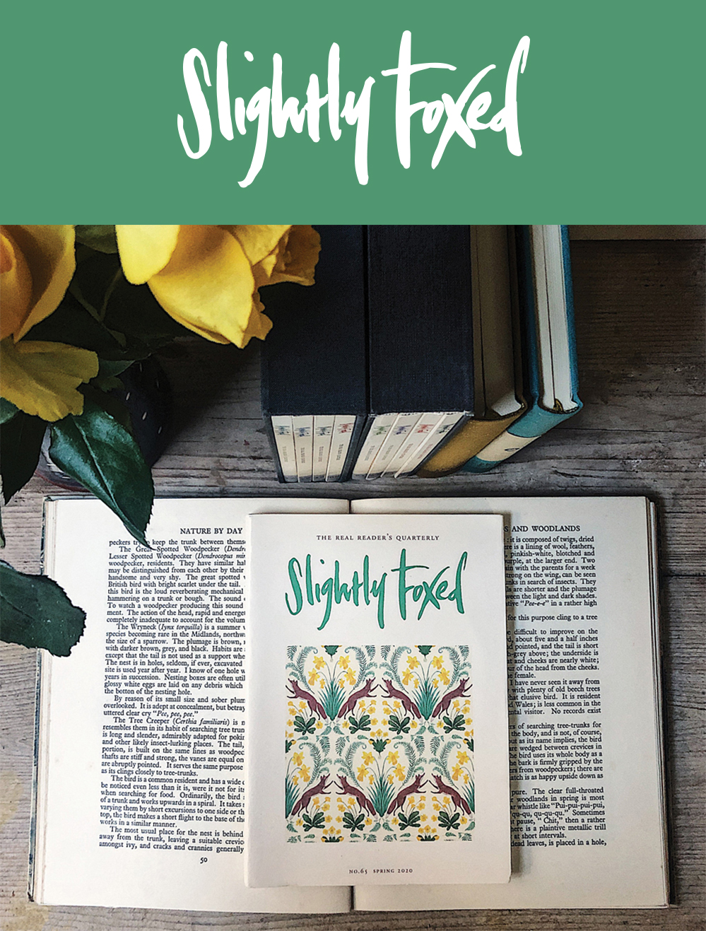 New this Spring | Issue 65 of Slightly Foxed magazine