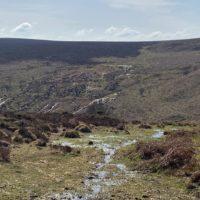 Dartmoor Streams | Slightly Foxed Editors' Diary