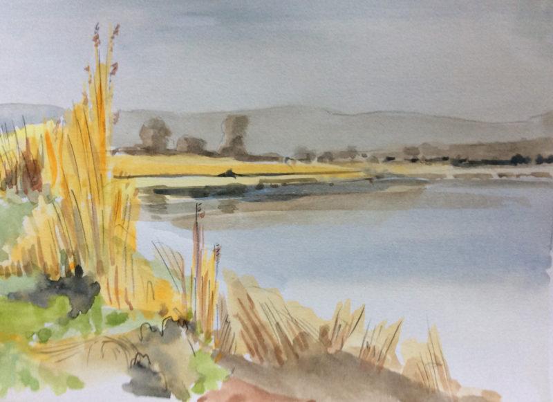 Severn Estuary, Mark Robinson | Editors' Diary