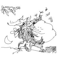 Quentin Blake | Slightly Famous People's Foxes