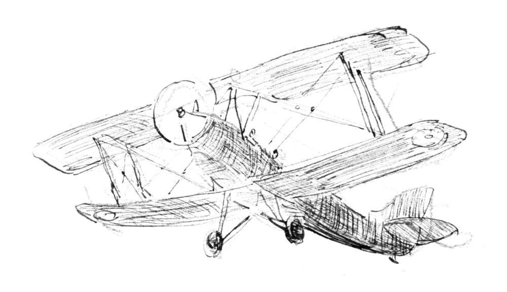 Martin Yeoman illustration | Andrew Joynes, T. H. White, Slightly Foxed 66