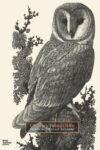 Charles Tunnicliffe: Prints: A Catalogue Raisonné