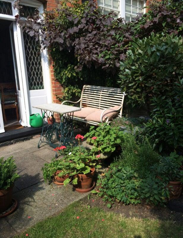 Kelross Road garden   Slightly Foxed Editors' Diary