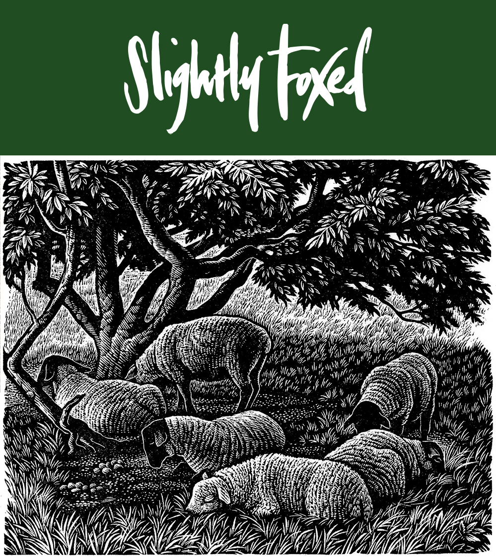 Shepherds' Lives | From the Slightly Foxed archives
