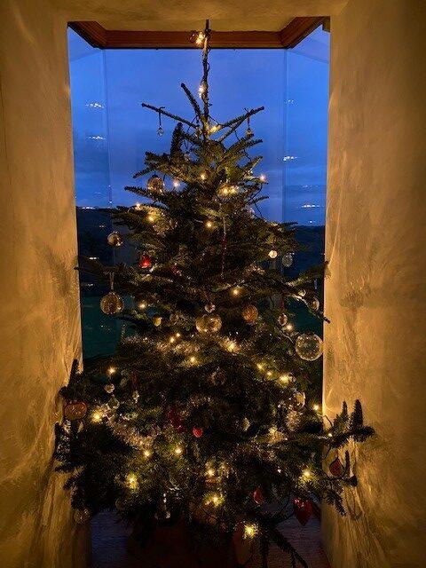 Christmas tree | Slightly Foxed Editors' Diary