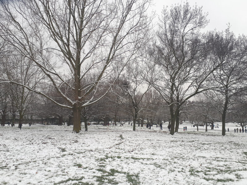 Snow in Finsbury Park | Slightly Foxed Editors' Diary